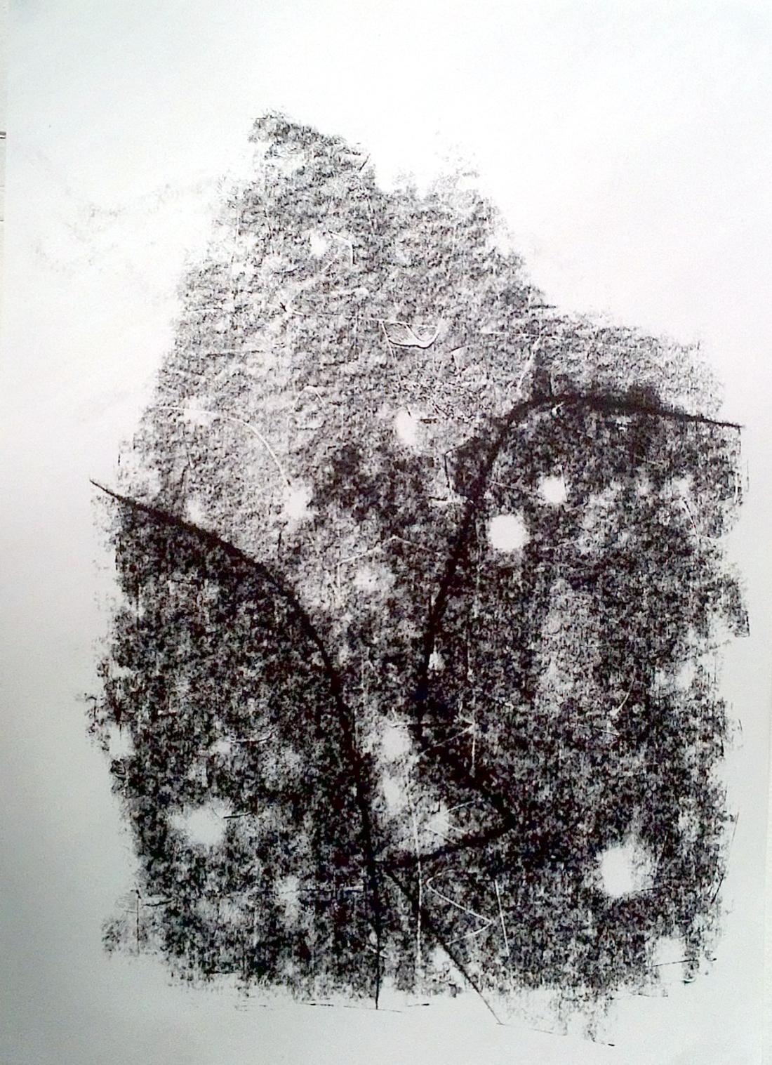 Sera James irvine, The zigzag path. Ink
