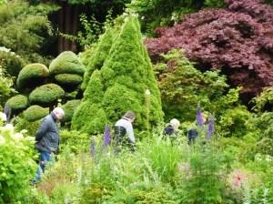 Trees in garden with Peter Hay Halpert, Huw Warren and Esther Woolfson.