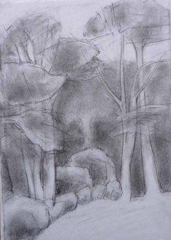 Cove Park trees. Pencil. 30cm x 21cm.
