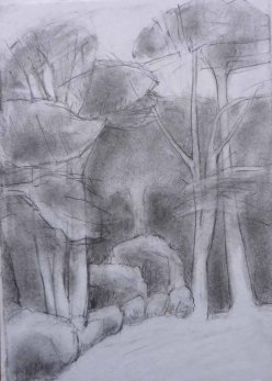 Cove Park trees. Pencil. 30cm x 21cm.