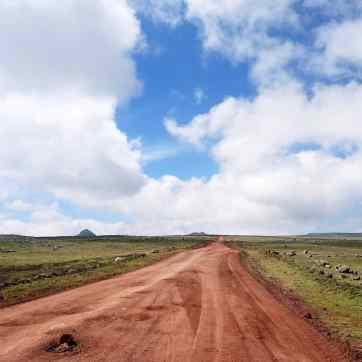 bale-mountains-4000m-highest-road-landcruiser-sera-james-irvine