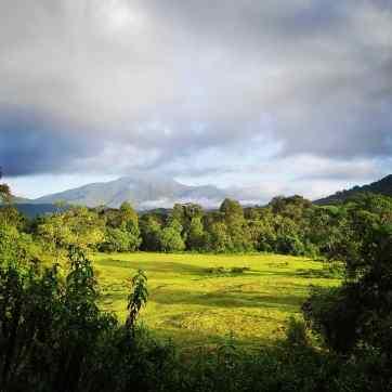 Harenna-forest-bale-mountain-lodge-sera-james-irvine