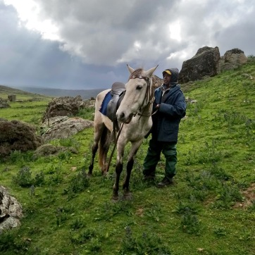 Sera-James-Irvine_riding-horses - bale mountains